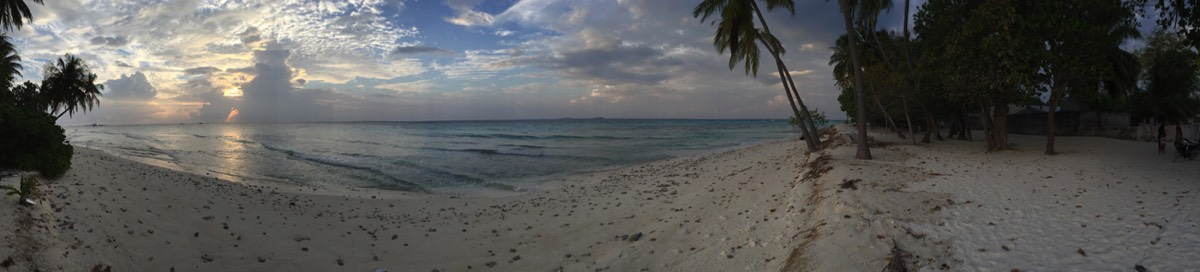 Boutique Beach Maldives Dhigurah Island Panoramic Shot White Sands and Palm Tree